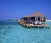 Stunning honeymoon suite