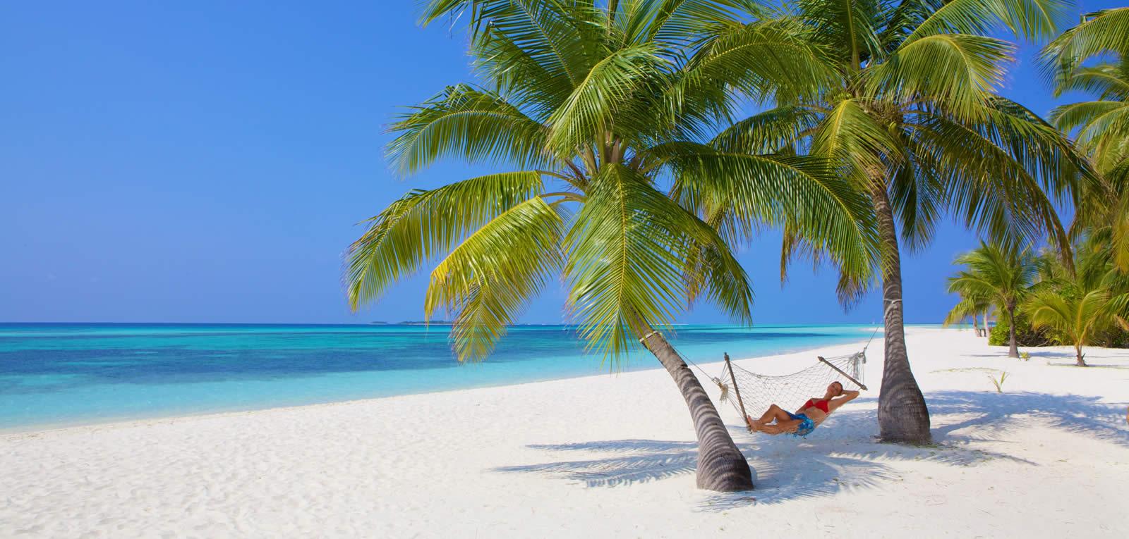 1600x765-kuredu-beach-palms