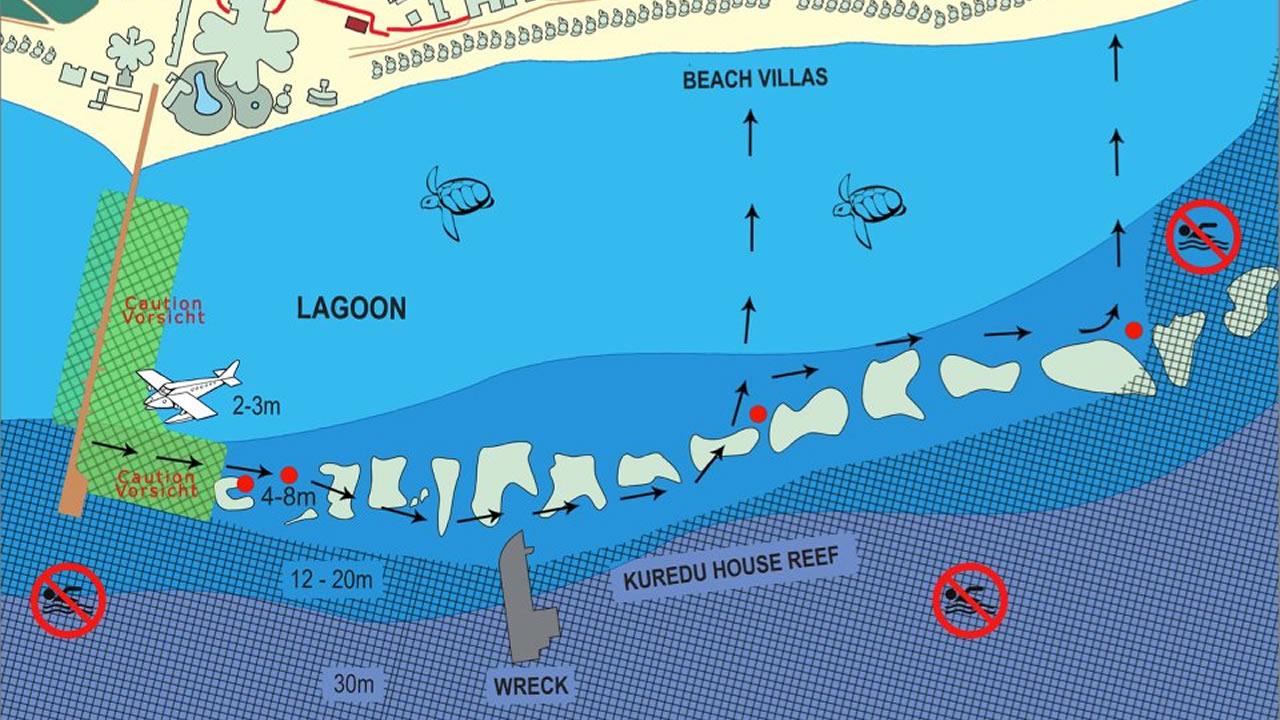 Kuredu Snorkeling Guide