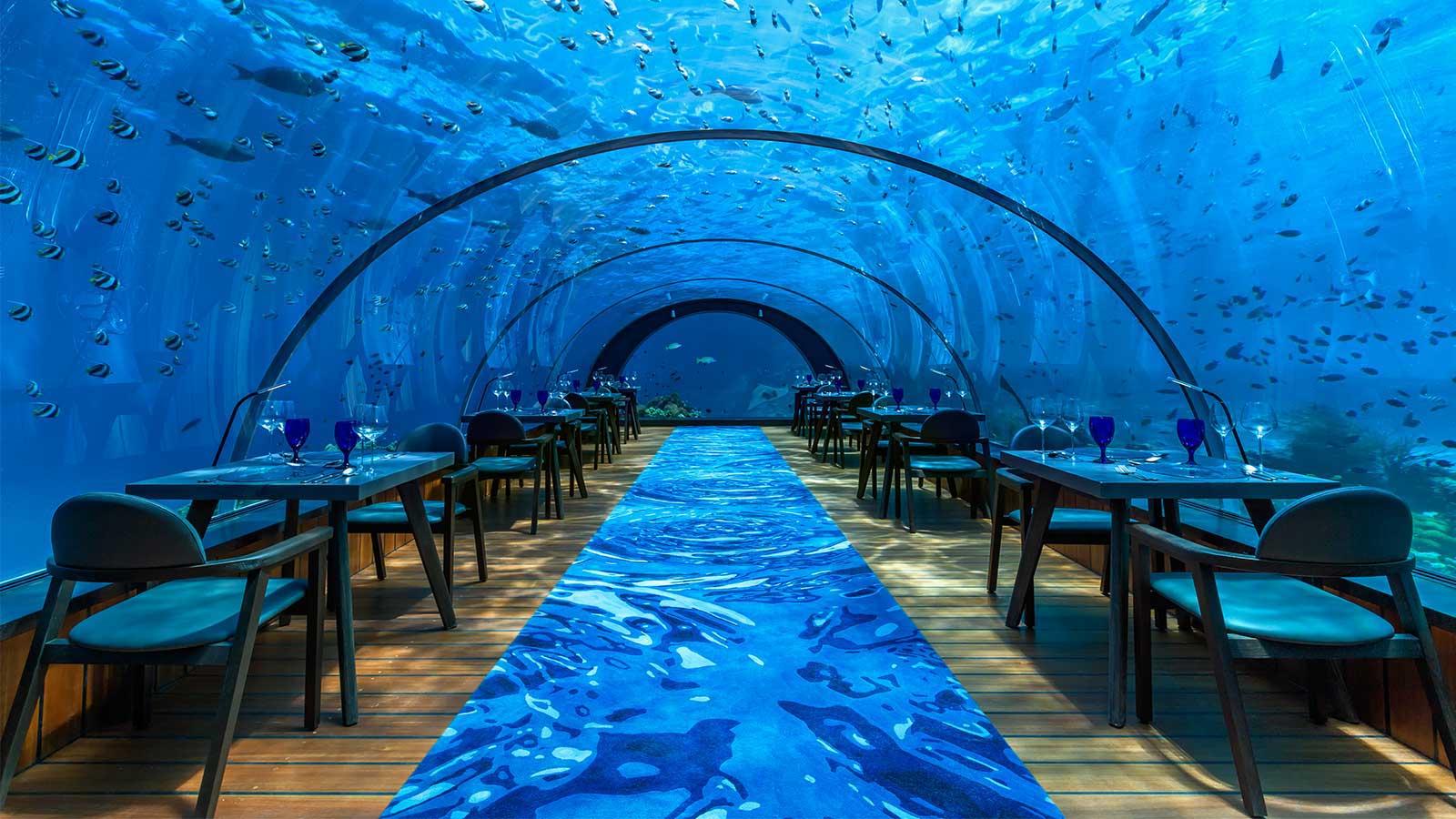 5 8 Undersea Restaurant At Hurawalhi Maldives Is Open For